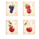 Тетрадь 80л.  А5 HATBER ECO спираль, клетка, обложка картон, Fruit Style (4 вида), 80Т5C1сп